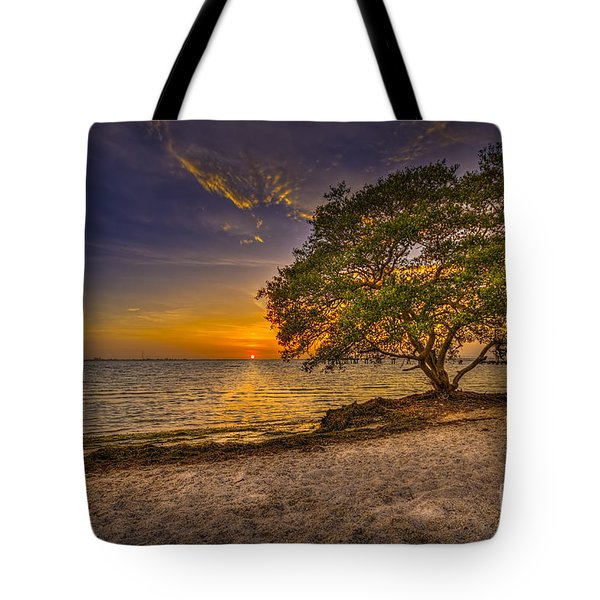 Soothing Light Tote Bag