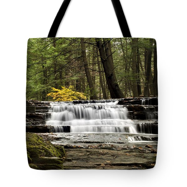 Soothing Waters Tote Bag by Christina Rollo