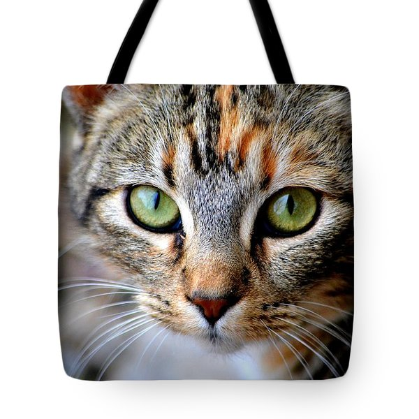 Tote Bag featuring the photograph Soul Cat by Deena Stoddard