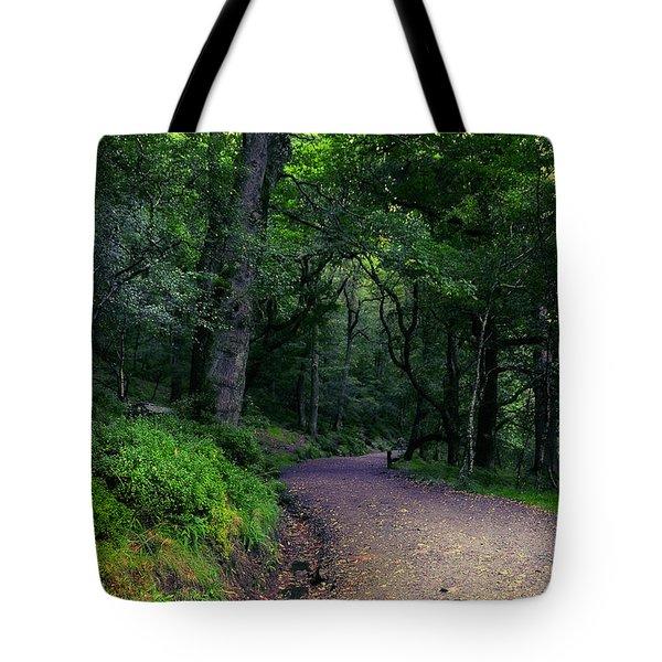 Soul Journey. Glendalough. Ireland Tote Bag by Jenny Rainbow