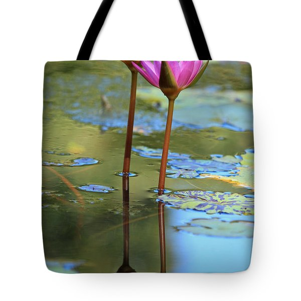 Soul Mates Tote Bag by Suzanne Gaff