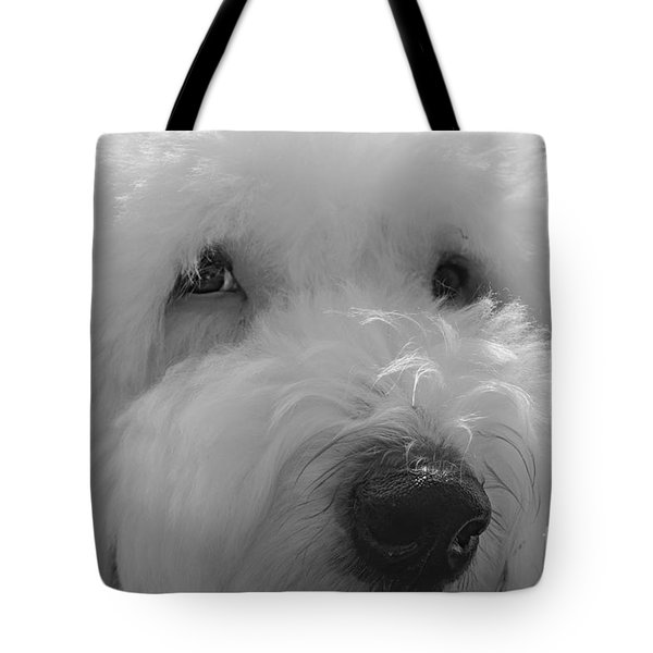 Soulful Eye's Old English Sheep Dog Tote Bag
