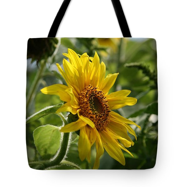 Soulshine No.2 Tote Bag by Neal Eslinger
