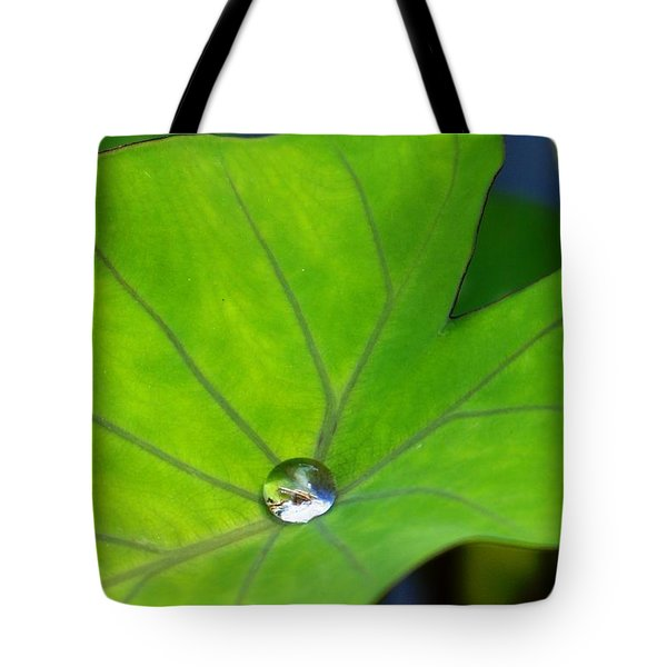Source Of Life Tote Bag by Julia Ivanovna Willhite