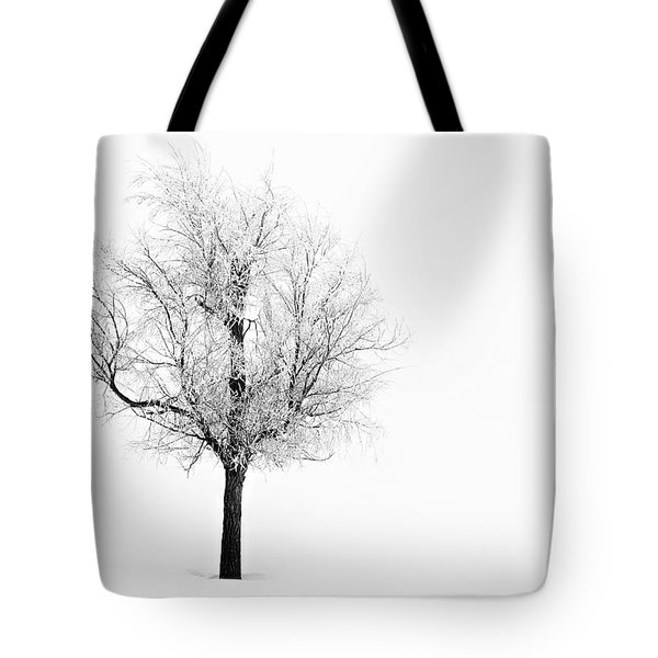 South Dakota Winter Tote Bag
