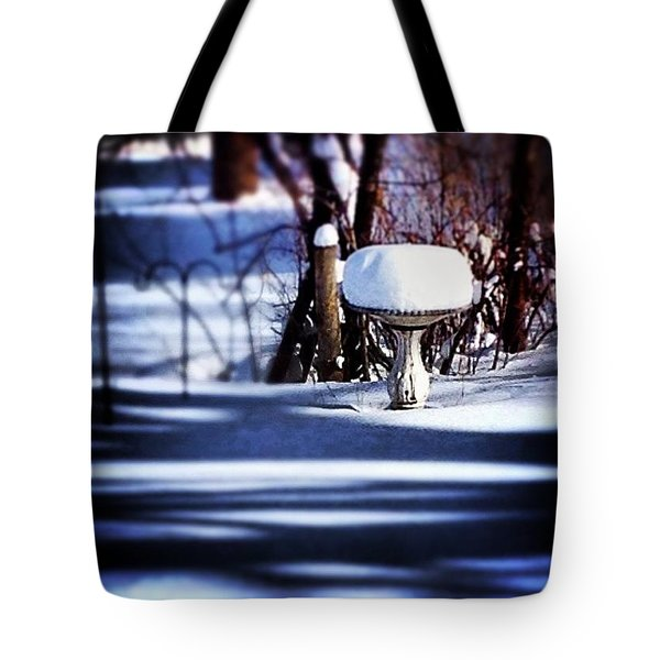 South For Winter Tote Bag