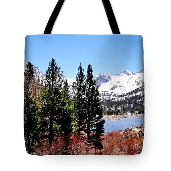 Tote Bag featuring the photograph South Lake by Marilyn Diaz