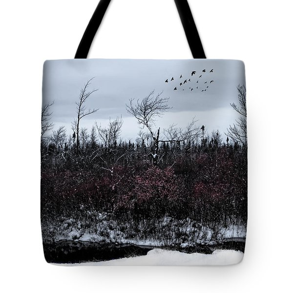 South To The Moon Tote Bag