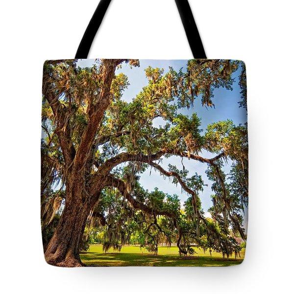 Southern Comfort Tote Bag by Steve Harrington