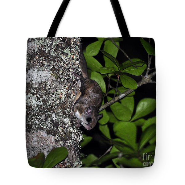 Southern Flying Squirrel Tote Bag by Al Powell Photography USA