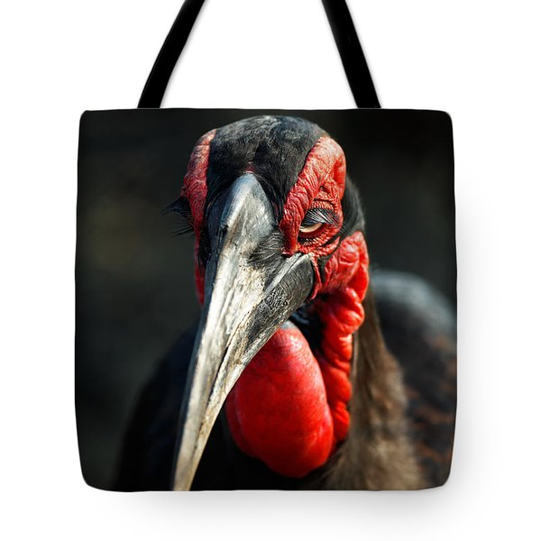 Southern Ground Hornbill Portrait Front View Tote Bag by Johan Swanepoel