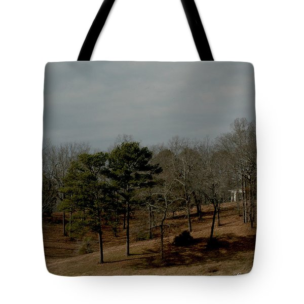 Tote Bag featuring the photograph Southern Landscape by Lesa Fine