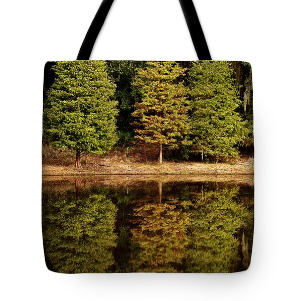 Southern Reflections Tote Bag by Phill Doherty