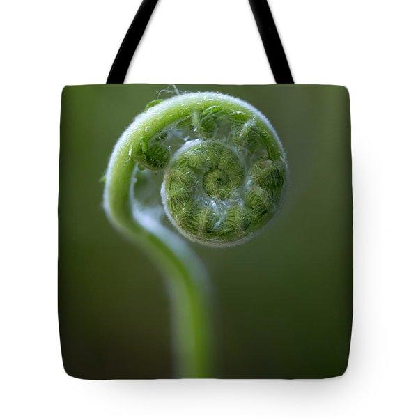 Southern Shield Fern Tote Bag