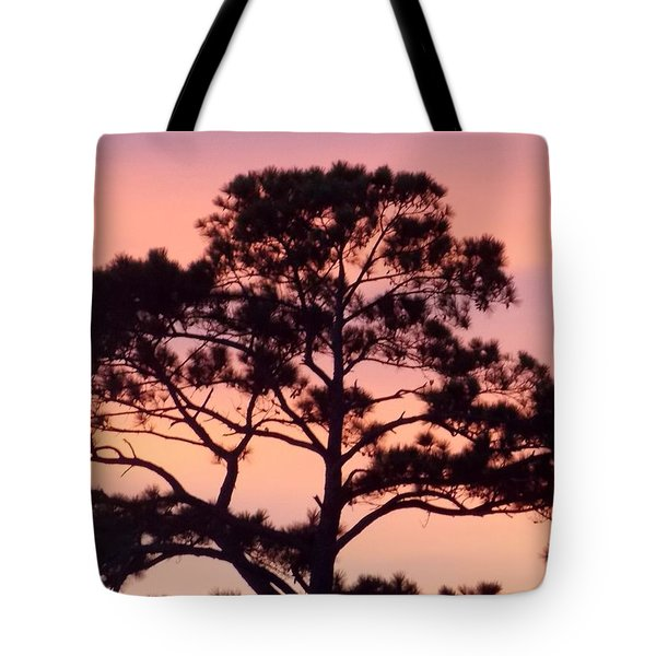 Southern Sundown Tote Bag by John Glass