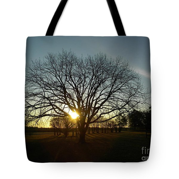 Southern Sunrise Special Tote Bag