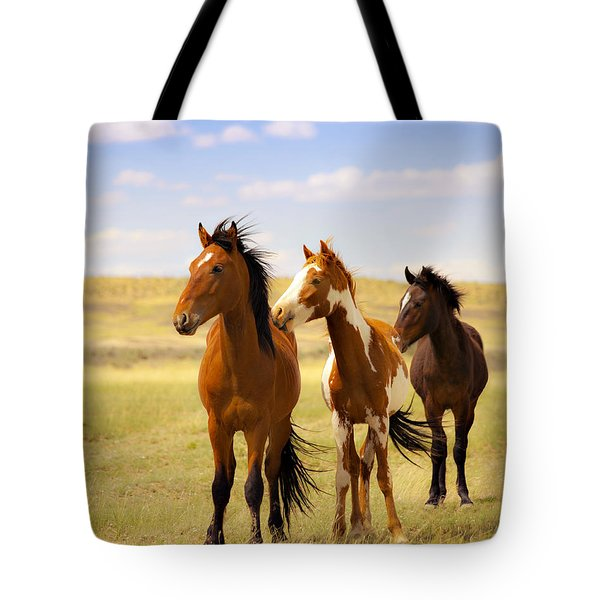 Southwest Wild Horses On Navajo Indian Reservation Tote Bag by Jerry Cowart