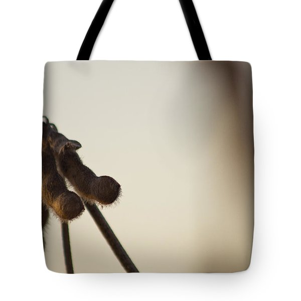 Soybeans At Sunset Tote Bag