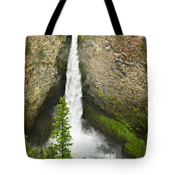 Spahats Falls Waterfall In Wells Gray Provincial Park Tote Bag by Elena Elisseeva
