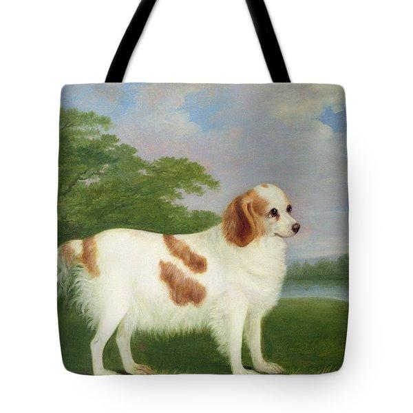 Spaniel In A Landscape Tote Bag