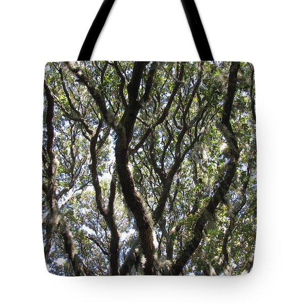 Spanish Moss Oak Tote Bag