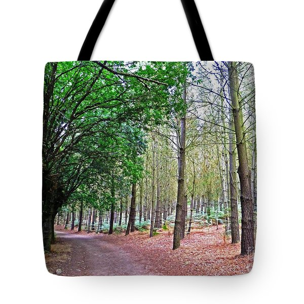 Spanish Serenity Tote Bag