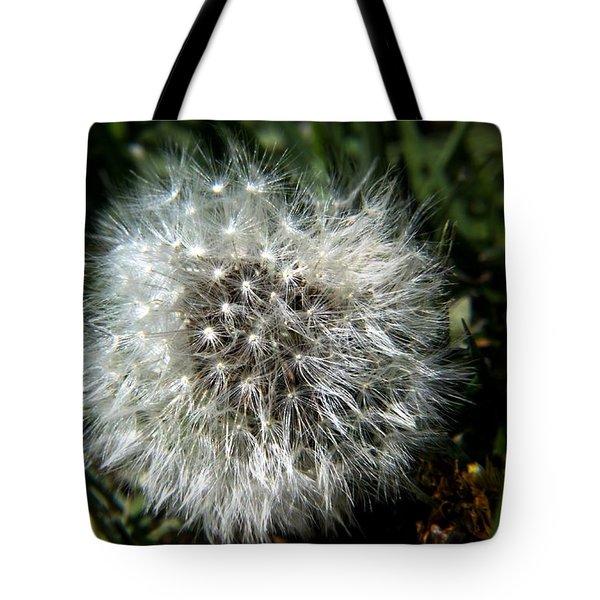 Sparkler - Dandelion Flower Tote Bag by Ramabhadran Thirupattur
