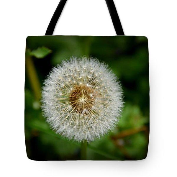 Tote Bag featuring the photograph Sparkling Dandelion by Debra Martz