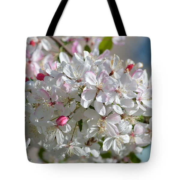 Sparkling Pearls Tote Bag by Sonali Gangane