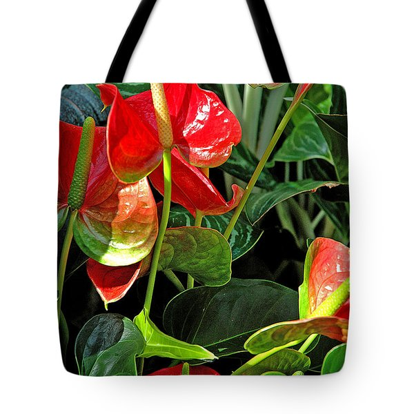 Tote Bag featuring the photograph Spathiphyllum Flowers Peace Lily by A Gurmankin
