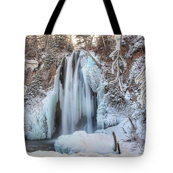 Spearfish Falls Tote Bag by Jana Thompson