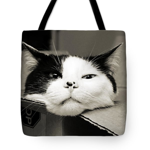 Special Delivery It's Pepper The Cat  Tote Bag