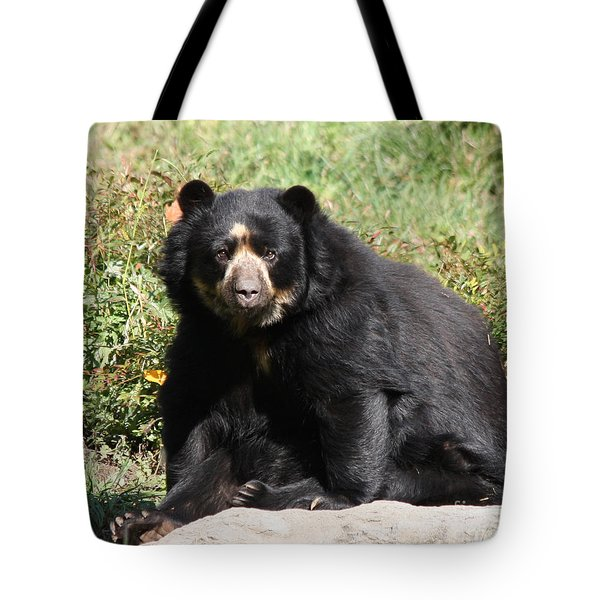 Speckled Bear Tote Bag by John Telfer