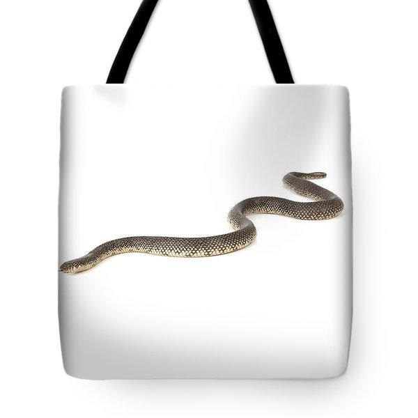 Speckled King Snake Tote Bag