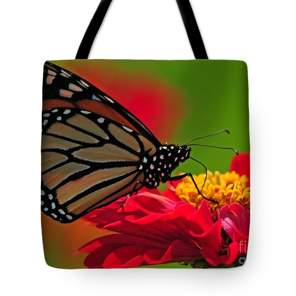 Tote Bag featuring the photograph Speckled Monarch by Olivia Hardwicke