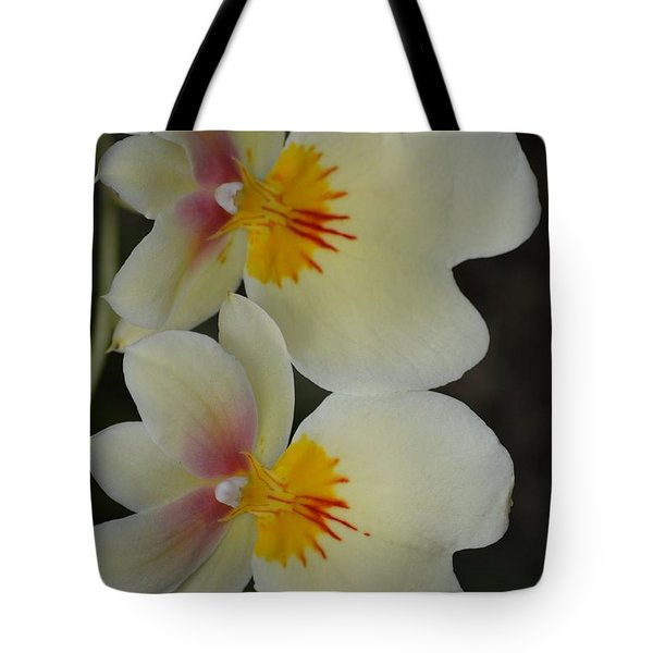 Speechless Beauty Tote Bag by Sonali Gangane