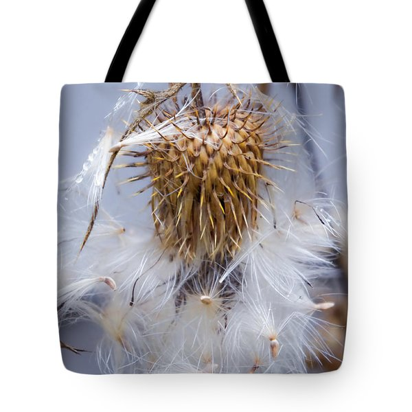 Spent Thistle Tote Bag