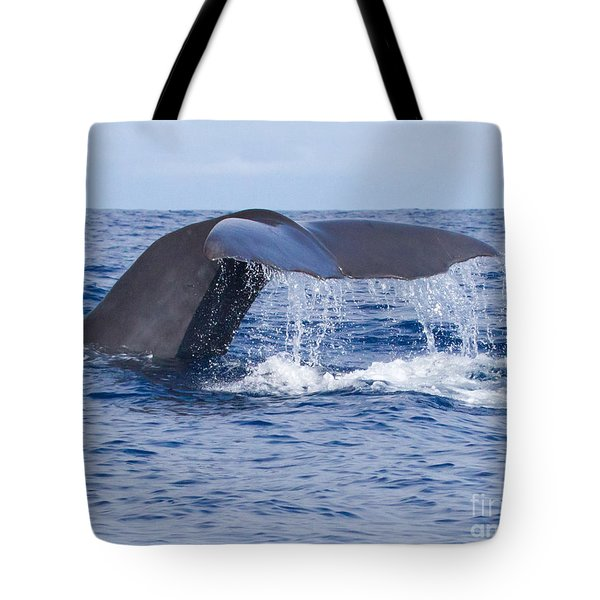 Sperm Whale Tail Tote Bag by Chris Scroggins