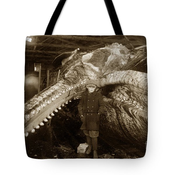 Sperm Whale Taken At Moss Landing California  On January 22 1919 Tote Bag