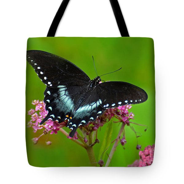 Spicebush Swallowtail Tote Bag