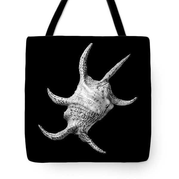 Spider Conch Seashell Tote Bag