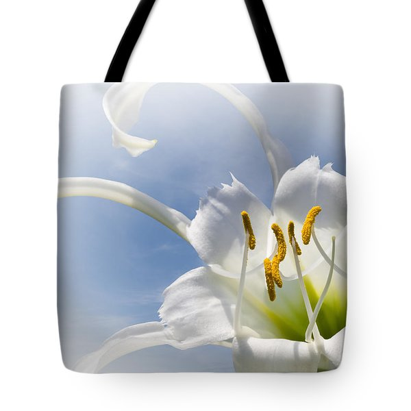 Spider Lily Tote Bag by Jane McIlroy