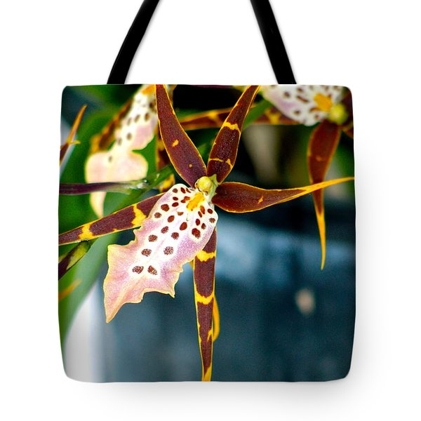 Spider Orchid Tote Bag by Lehua Pekelo-Stearns