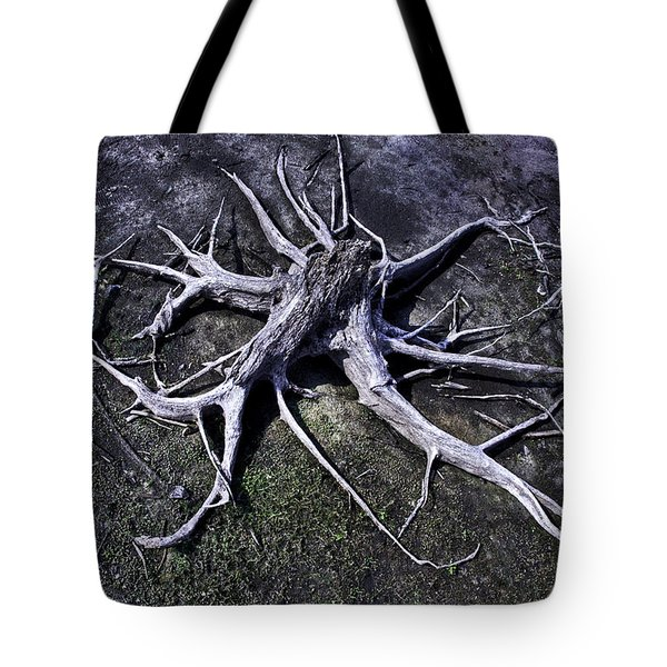 Tote Bag featuring the photograph Spider Roots At Manasquan Reservoir by Gary Slawsky