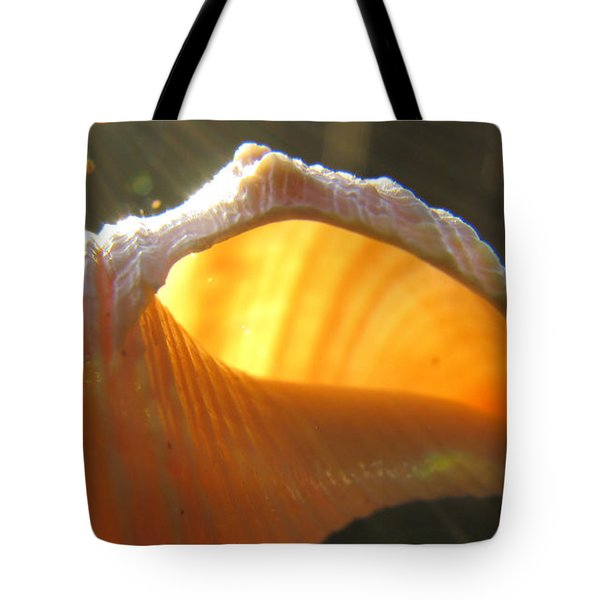 Spiral Light Tote Bag
