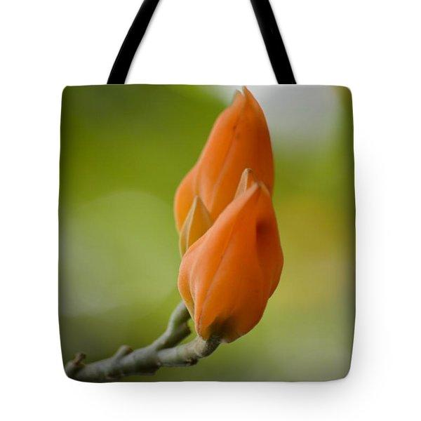 Spirit Of Spring Tote Bag