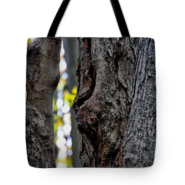 Spirit Of The Forest Tote Bag by Andrea Kollo