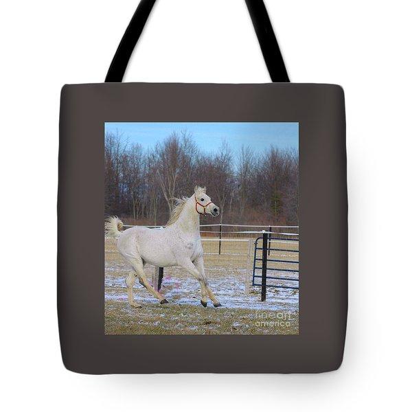 Spirited Horse Tote Bag by Kathleen Struckle