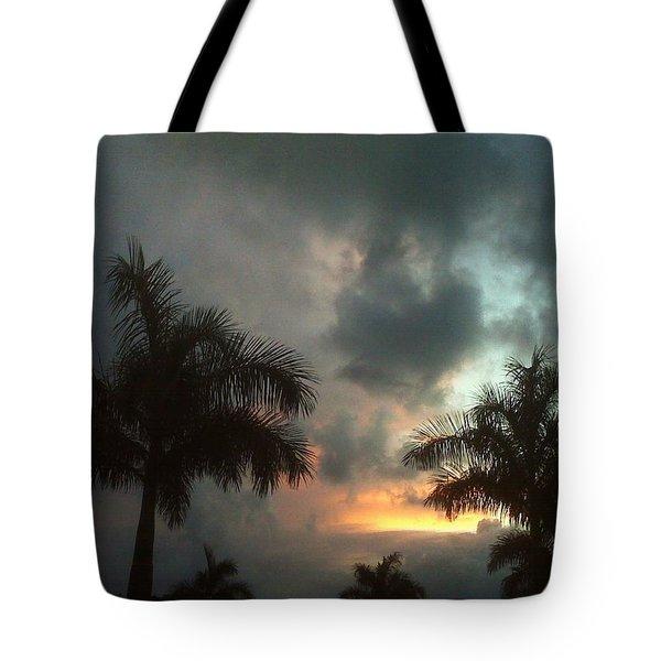 Splash Of Color Tote Bag by K Simmons Luna