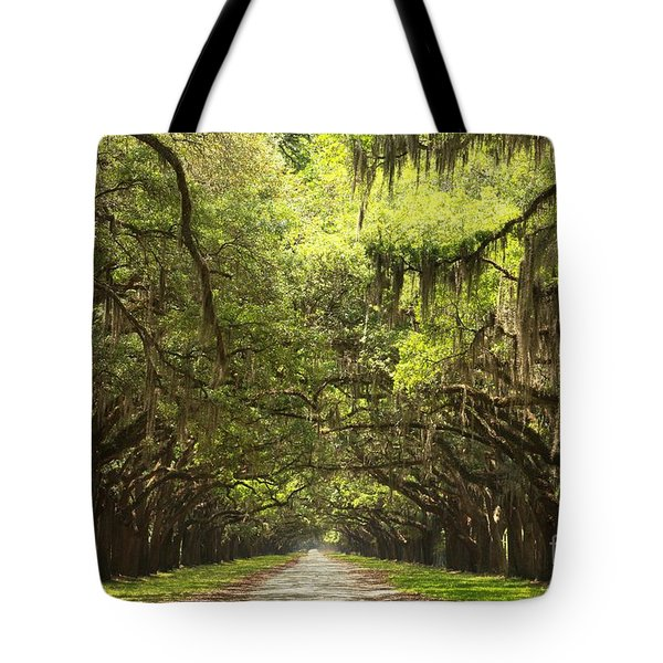 Splendid Oak Drive Tote Bag